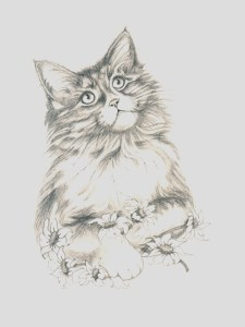 dibujos a lapiz bonitos (10)