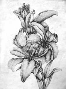 dibujos a lapiz bonitos (8)