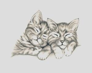 Dibujos a lapiz de gatos (5)