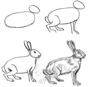 Aprender a hacer dibujos a lápiz simples (12)