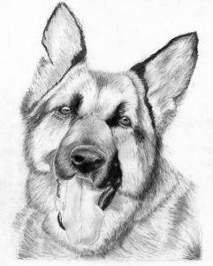 Aprender a hacer dibujos a lápiz simples (5)