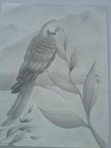 Dibujos a lápiz bonitos (9)