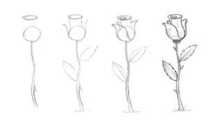 15 ideas simples para comenzar a dibujar a lápiz (10)