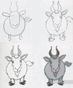 15 opciones de hermosos dibujos a lápiz para principiantes (2)