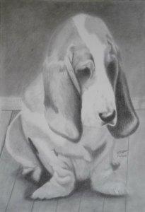 Dibujos en lápiz y carbonilla (10)