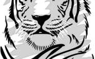12 Hermosos dibujos para tatuajes (2)