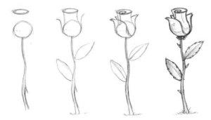 11 Nuevos dibujos a lápiz para principiantes (3)