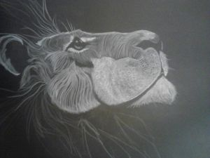 10 Nuevos dibujos con lápiz blanco (1)
