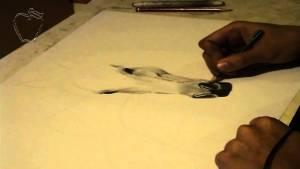 10 Nuevos dibujos con lápiz blanco (2)