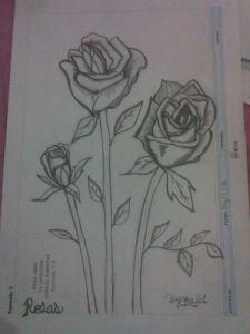 10 dibujos a lápiz de rosas para tatuajes (3)