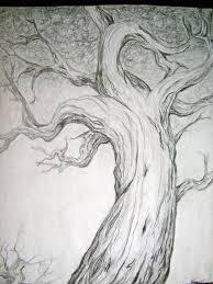 11 Nuevos dibujos a lápiz de árboles (8)