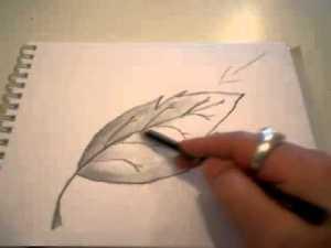 11 bellos dibujos a lápiz con sombras (9)