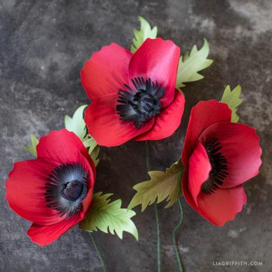 California Poppy Template - Lia Griffith