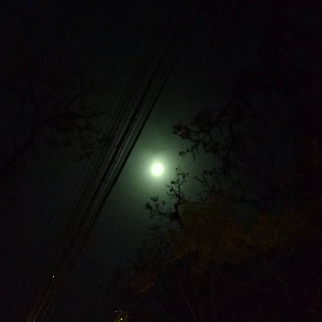 lua verde