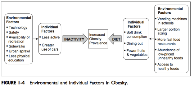 Environmental and Individual Factors in Obesity