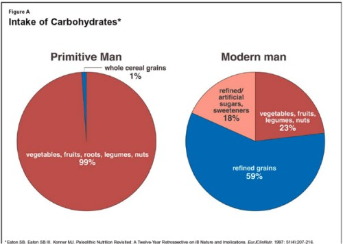 intake of carbohydrates2 News Flash! Caveman Diet Good...Your Diet Bad