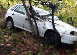 Saída de pista deixa dois feridos em Monte Belo