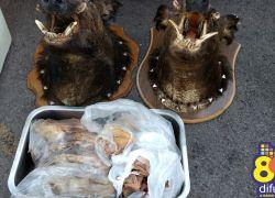 ARPA e Polícia Civil apreendem material de caça ilegal em Bento