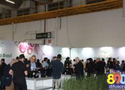 Expovinis 2017: Um espaço para mostrar o vinho brasileiro