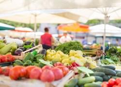 II Seminário Regional sobre Alimento Seguro – Serra ocorre dia 19 em Caxias