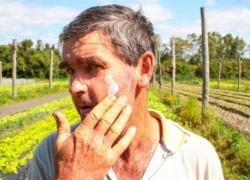 Operação Vindima tem distribuição de protetor solar na agricultura de Bento