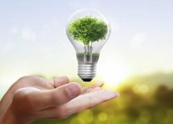 Sete empresas se cadastram para construir Usina de Resíduos Sólidos em Bento