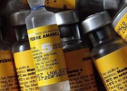 Vacinação contra febre amarela será ampliada para todo o país