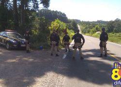 PRF intensifica fiscalização na busca de bandidos fugitivos que atacaram carro-forte