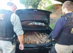 PRF e BM apreendem cerca de 200 kg de maconha em Estrela e recuperam veículo roubado