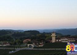 Região Uva e Vinho da Serra está entre as mais ofertadas no Estado