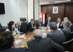 Comitiva gaúcha se reúne com ministro da Agricultura para tratar do setor vitivinícola