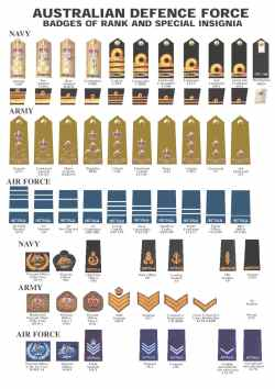 Innovative Australian Air Force What Is Est Military Rank Ever Achieved By A Dog What Is Est Military Rank Reached By A Dog Click To Enlarge Badges