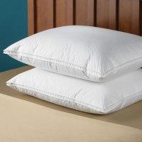 The Superior Goose Down Pillow (Soft Density) - Hammacher ...