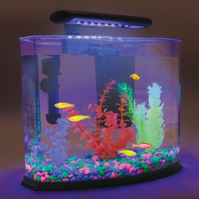 fish tank heater instructions