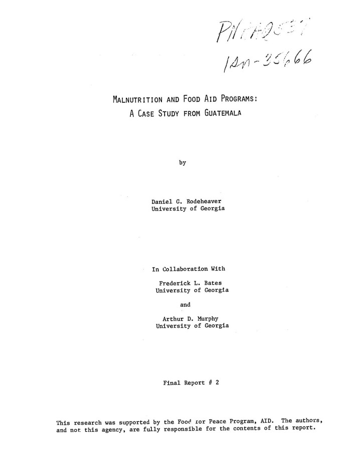 report title page example