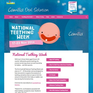 Web Design and Development with Inbuilt SEO, Camillia