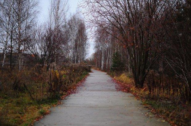 main pathway of the park am nordbahnhof