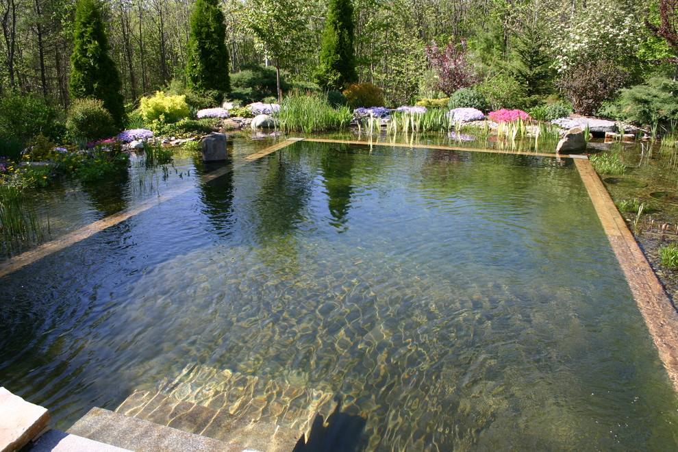 Schwimmingpool Natur 67 Cool Backyard Pond Design Ideas - Digsdigs