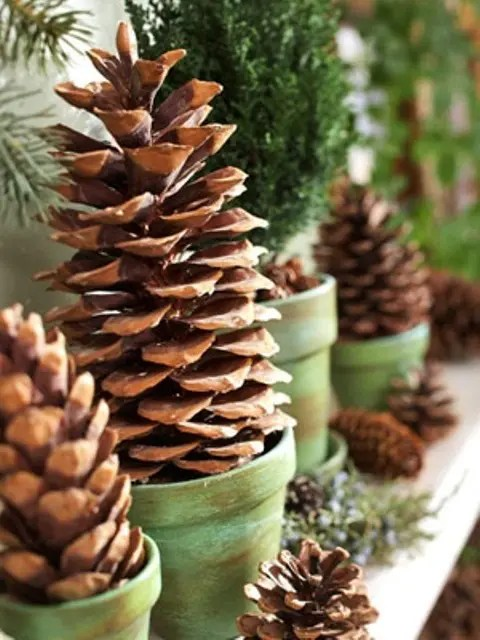 Faux Kitchen Cabinet Doors 55 Awesome Outdoor And Indoor Pinecone Decorations For
