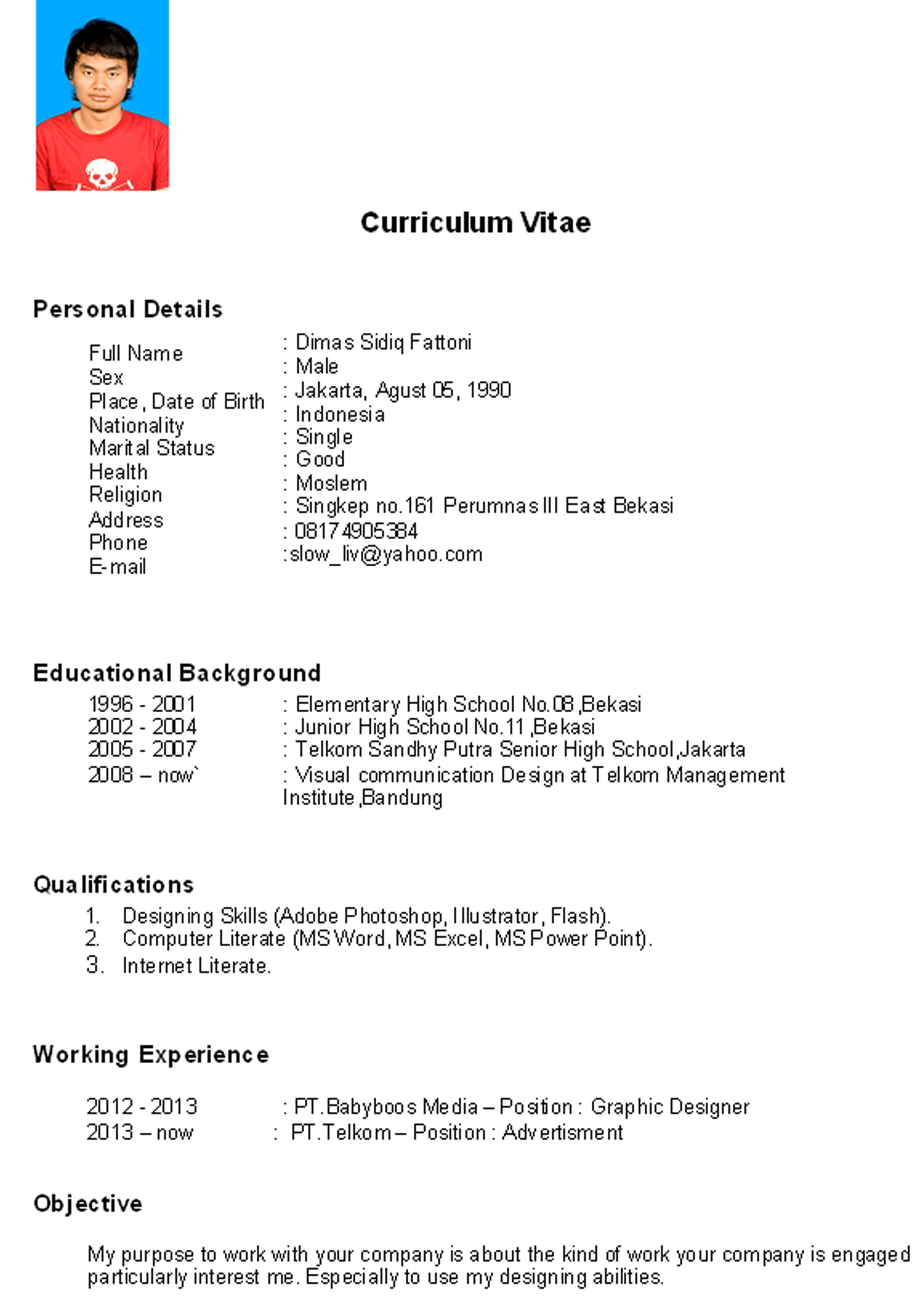 curriculum vitae format cabin crew service resume curriculum vitae format cabin crew cv template examples writing a cv curriculum vitae giz images curriculum