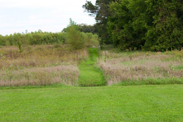Walking path at Pleasant Grove Pizza Farm