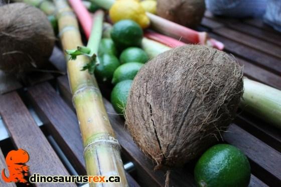 Bacardi DEQ - Coconuts and Rhubarb