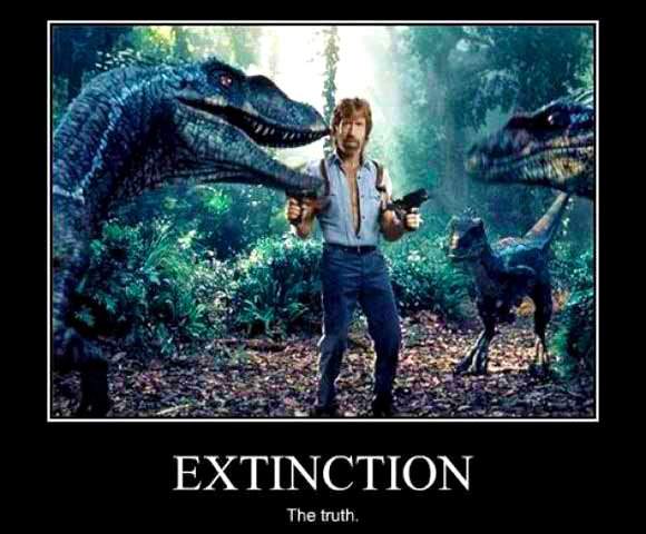 chuck-norris-vs-dinosaurs-the-real-truth-about-extinction