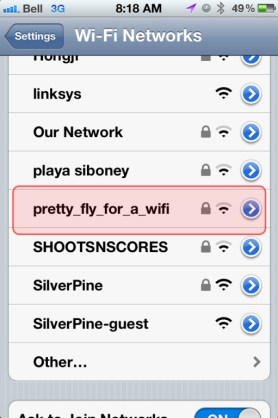 Pretty Fly for a WIFI funny network