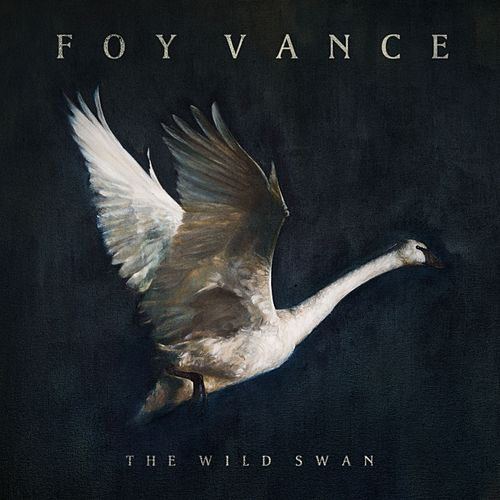 The Wild Swans On The Lake by Foy Vance