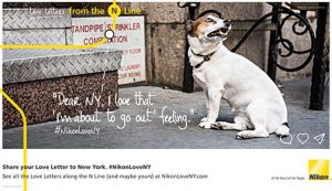 Nikon-Love-Letters-Dog-GoingOut