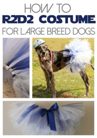 DIY R2D2 Costume for Dogs