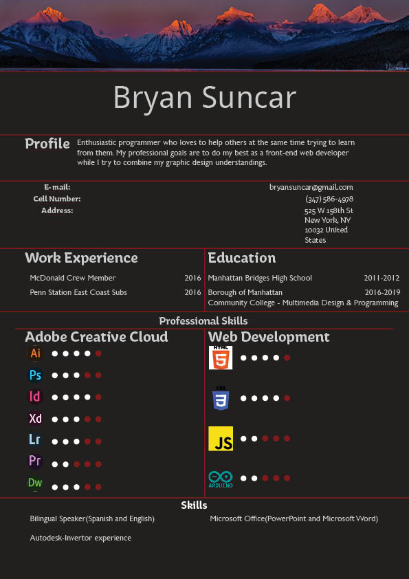 Can you review my resume? - Getting a Developer Job - The