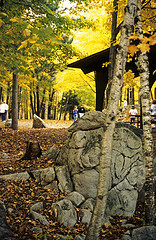Rib Mountain State Park in the Fall