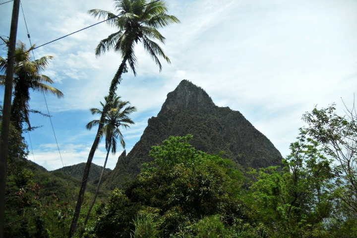 Pitons and palm trees